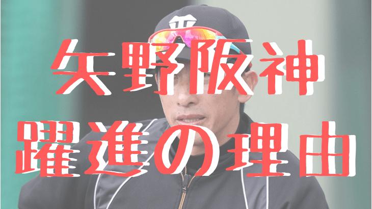 矢野阪神の躍進